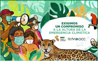 Movimiento Ciudadano frente al Cambio Climatico - MOCICC-